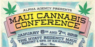 maui cannabis conference