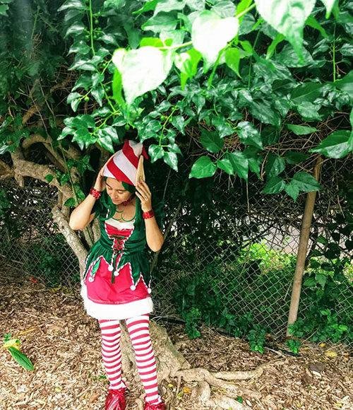maui elf
